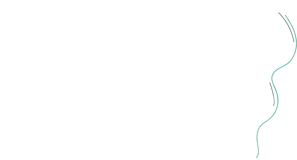 flatcoin