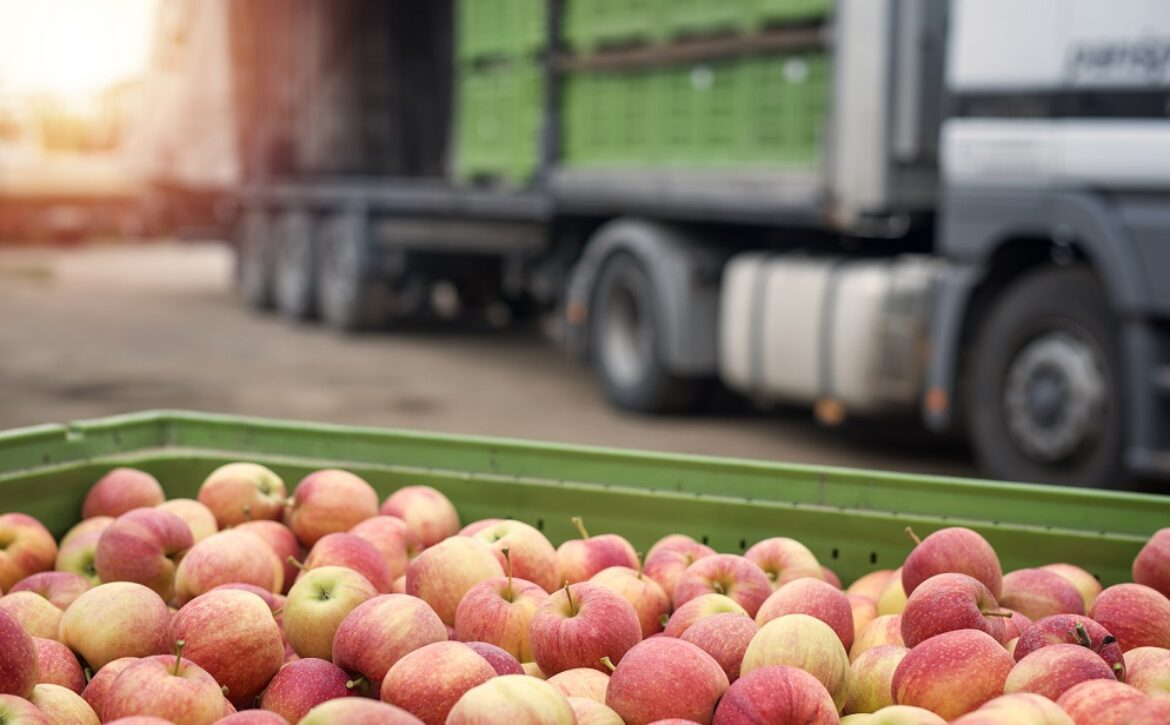 Truck loaded with containers full of apples ready to be shipped to the market.